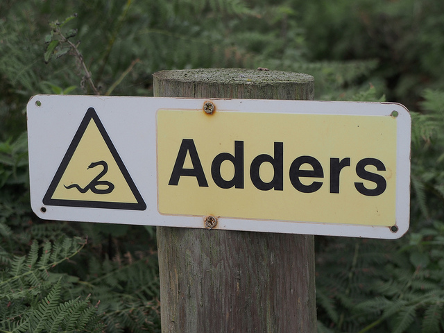 WARNING adders sign