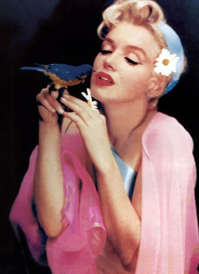 Marilyn Monroe with Black Bird
